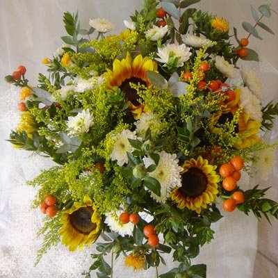 7 - פרחי שמש - אשדוד