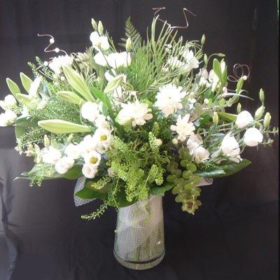9 - פרחי שמש - אשדוד
