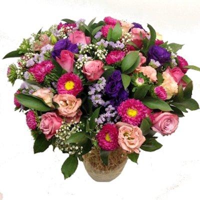 GRACE - תלתן פרחים - צפת
