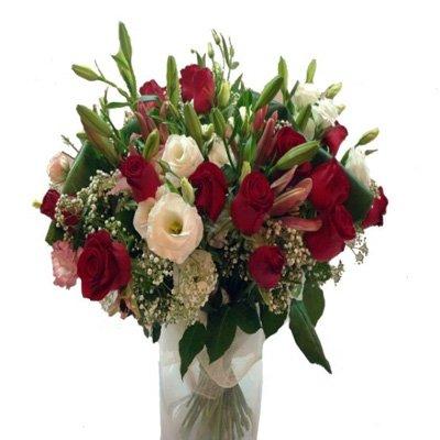 LALU - תלתן פרחים - צפת