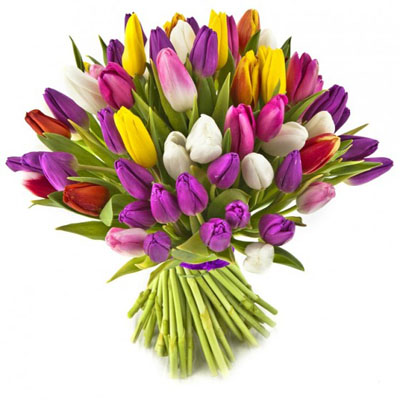 זר טוליפים - פרחי עירית - פתח תקווה