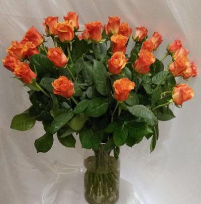 ורדים כתומים - פרחי ונילה - ירושלים