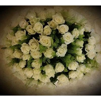 זכרונות לבנים - פרחי ונילה - ירושלים