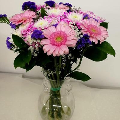 זר 16 - משתלת צמחים פרחים - אילת