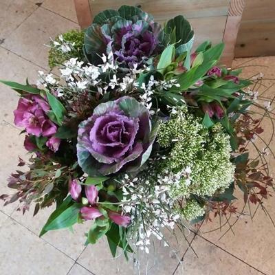 חיוכים - פרחי סיתוונית - אשקלון