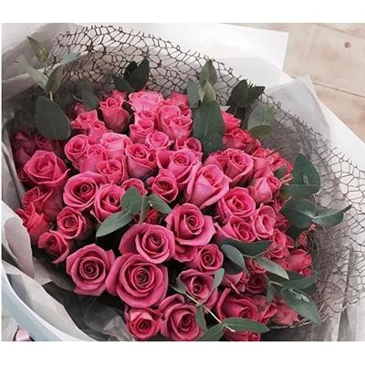 תשוקה - פרחי סיתוונית - אשקלון