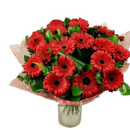 זר גרברות - מרכז הפרחים חיפה - חיפה