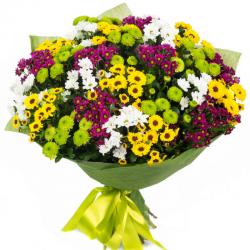 צבעי אביב - חיה'לה פרחים - חיפה
