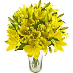 צהוב אלגנטי - חיה'לה פרחים - חיפה