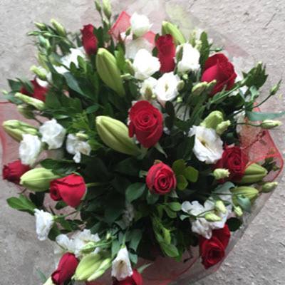 נשיקה מתוקה - פרח וסימפטיה - זכרון יעקב