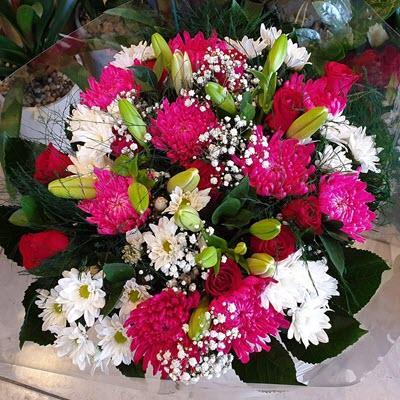 מסיבת פרחים - לה רוז דה פריז - ירושלים