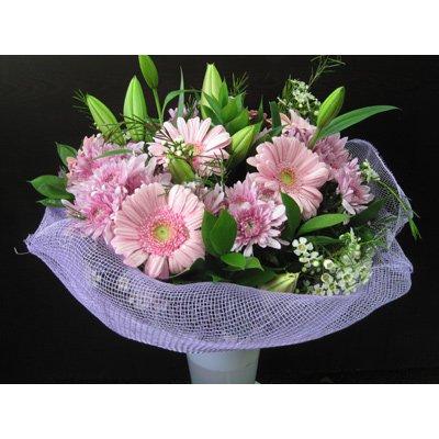 הזר הורוד - פרח באהבה - אילת