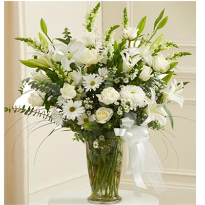 הלבן החגיגי - פרח באהבה - אילת