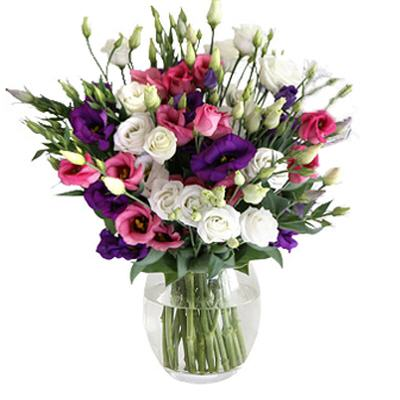 זר הליזיאנטוס - פרח באהבה - אילת