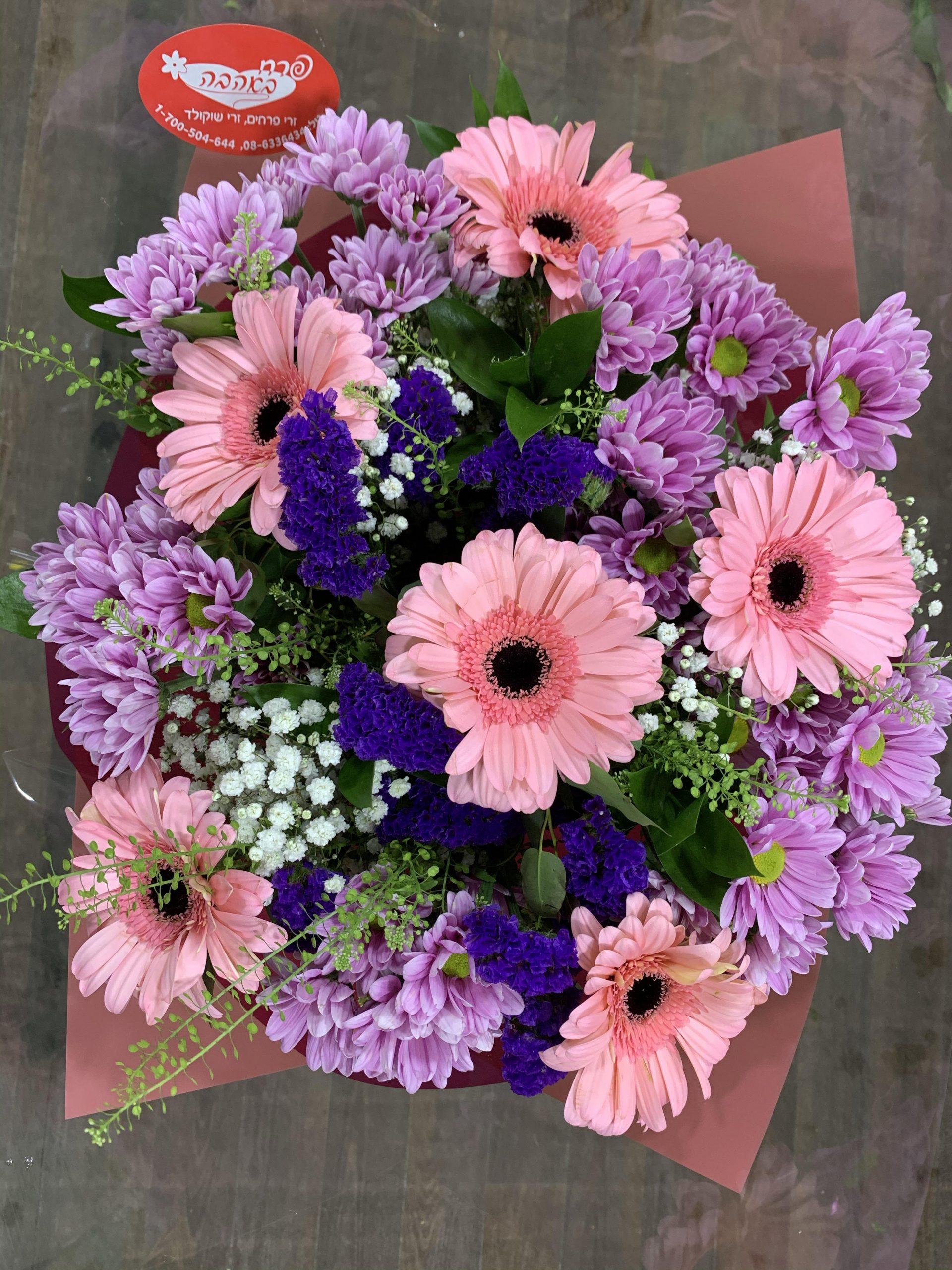 ורוד סגול - פרח באהבה - אילת