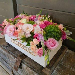 פרחי קיץ בתיבה - בר פרחים וכלים - אשקלון