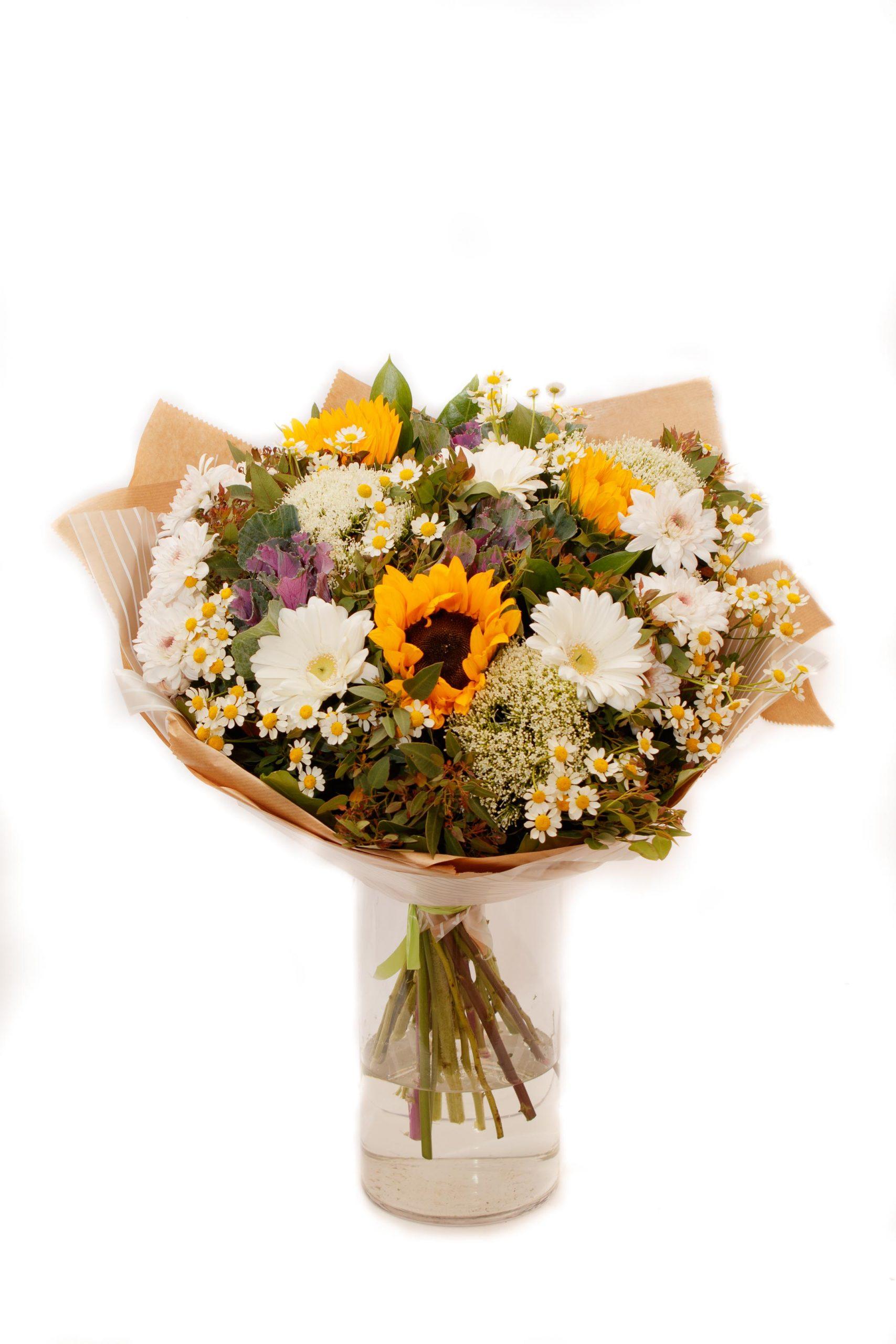 ואלס הפרחים - The garden - טבריה