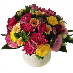 דבי מרגשת - דבי פרחים - קרית ביאליק