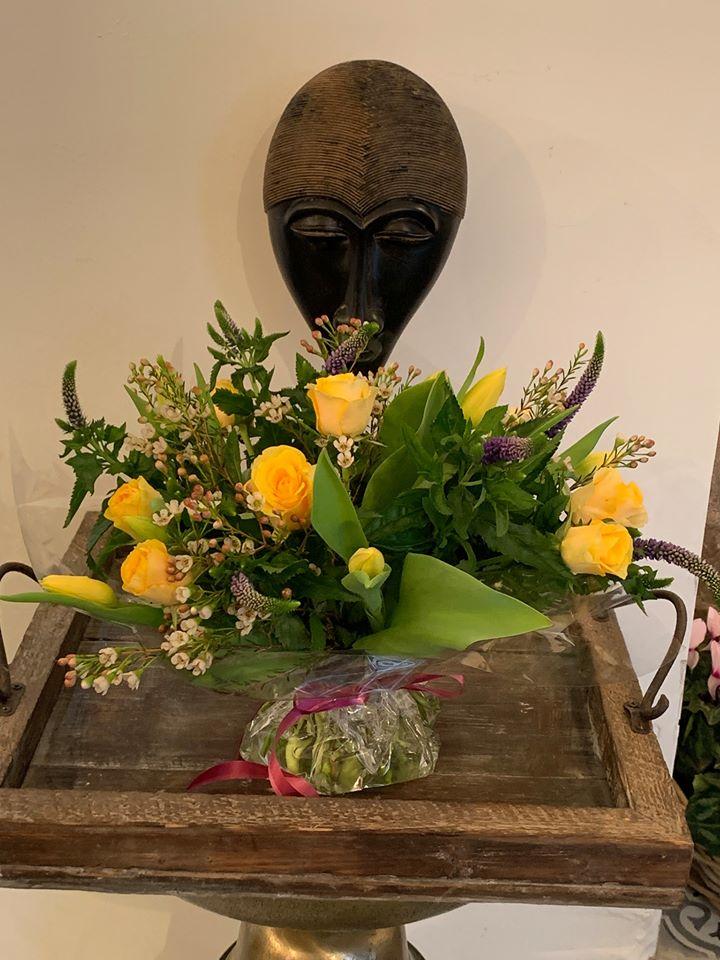 קרן שמש - פרחי סיתוונית - אשקלון