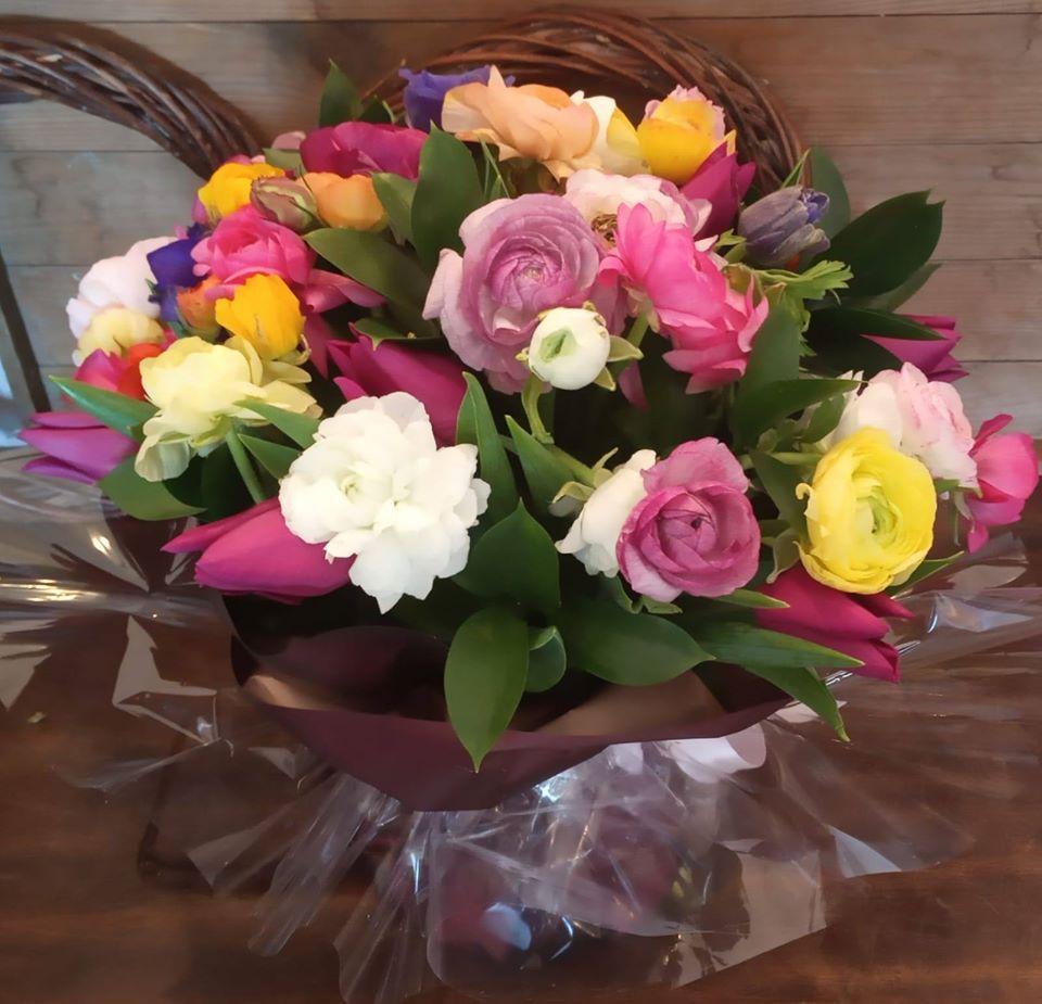 שמחה - פרחי סיתוונית - אשקלון