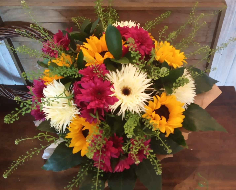 פרחי קיץ צבעוניים - פרחי סיתוונית - אשקלון