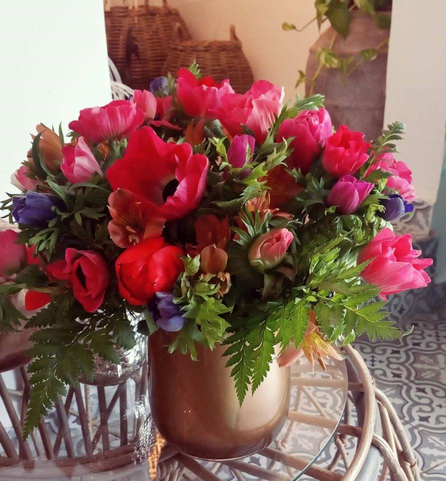 כלניות - פרחי סיתוונית - אשקלון