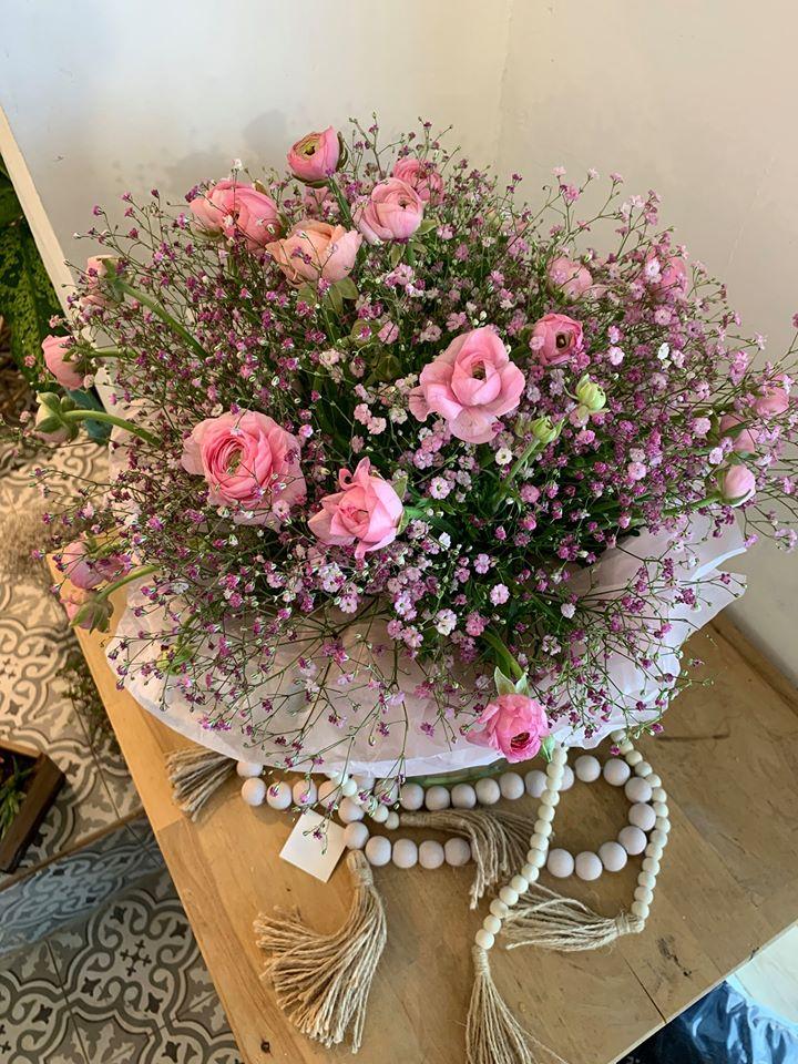 ורוד וקסום - פרחי סיתוונית - אשקלון