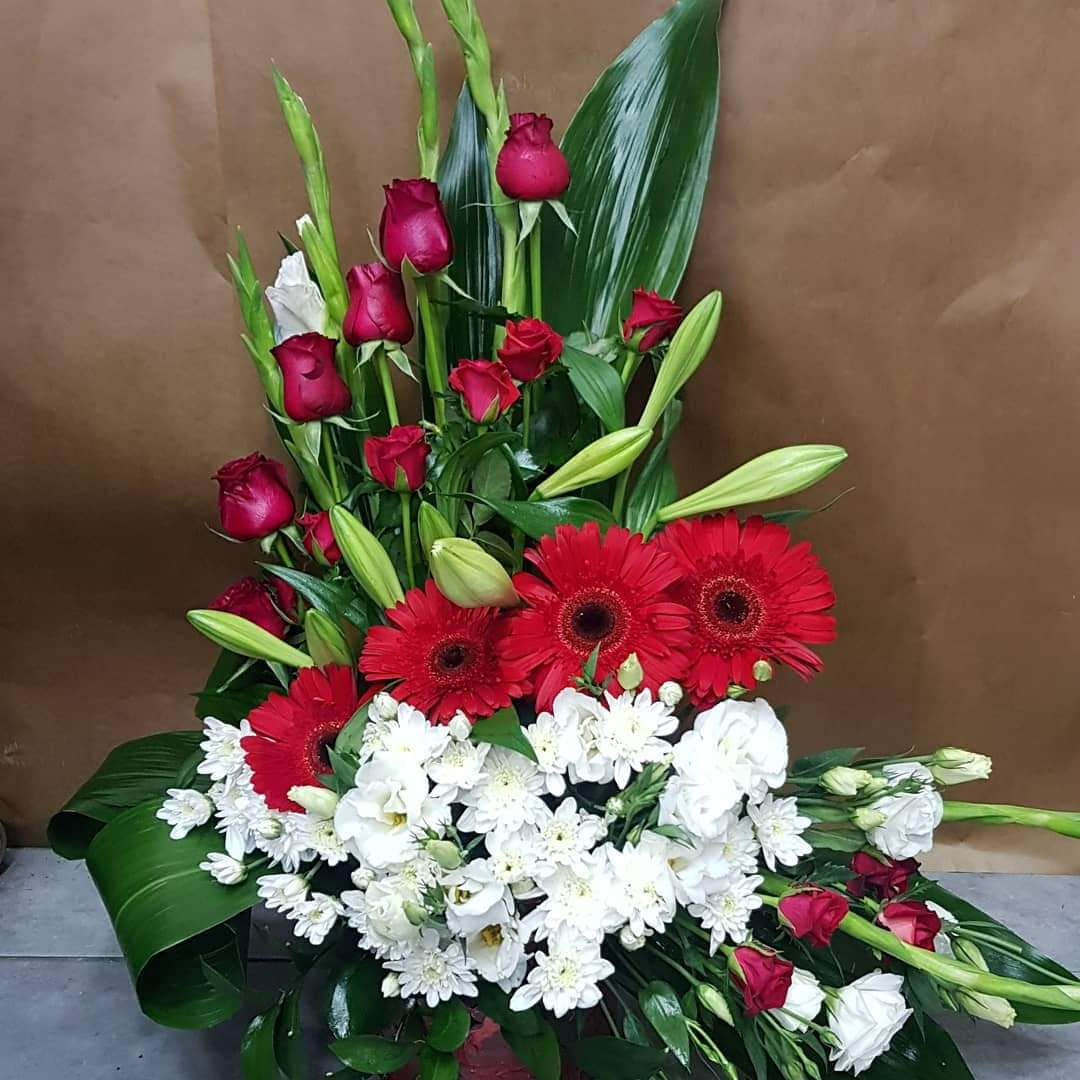 סידור פרחים חזיתי (16) - פרחי טוליפ - בת ים