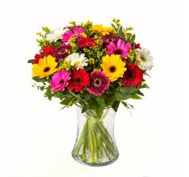 זר גרברות צבעוני - פרחים רמת החייל TLV - תל אביב