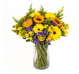 חמניות באהבה - פרחים רמת החייל TLV - תל אביב