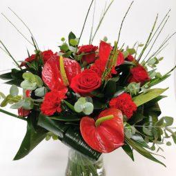 אדום אקזוטי - אורכידאה פרחים - חדרה