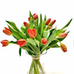 זר טוליפים באגרטל  - אורכידאה פרחים - חדרה