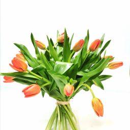 זר טוליפים  - אורכידאה פרחים - חדרה