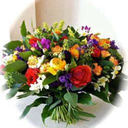 חורף חם  - אורכידאה פרחים - חדרה