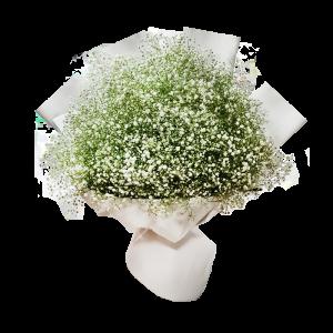 זר גיבסנית לבן - פרחי לב הגליל - טבריה