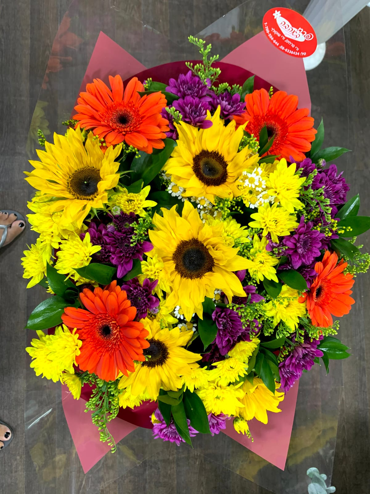 צבעוני בעיניים - פרח באהבה - אילת