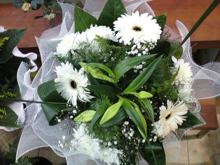 זר חרציות ליליות גרברות - פרחי טוליפ - בת ים